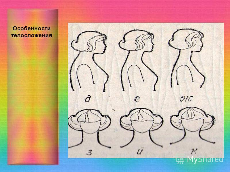 Особенности телосложения