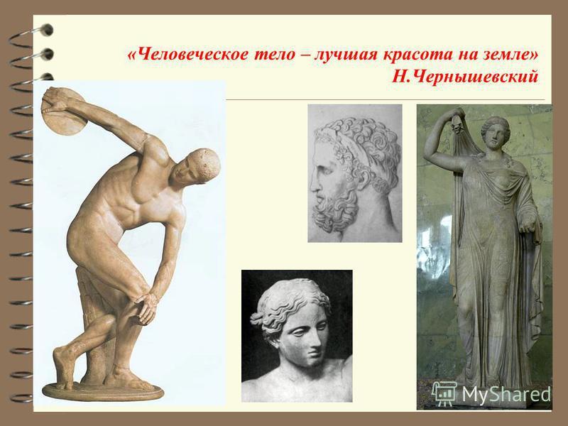 Золотое сечение и пропорции тела человека