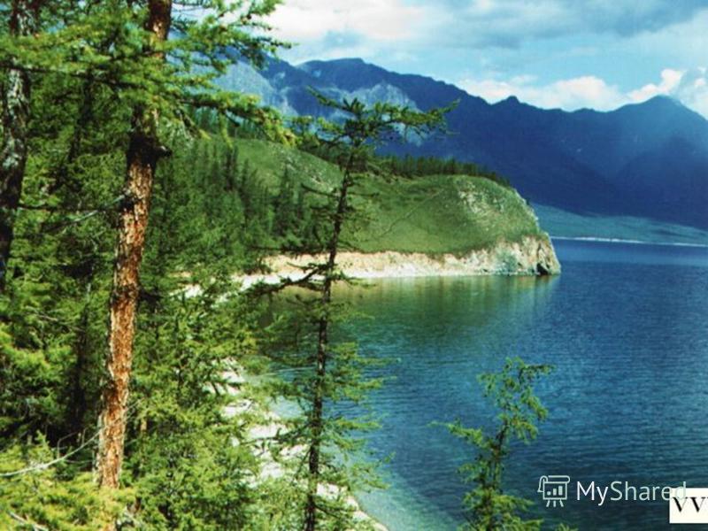 Озера – и самое большое в мире – Каспийское, и самое глубокое – Байкал – тоже у нас.