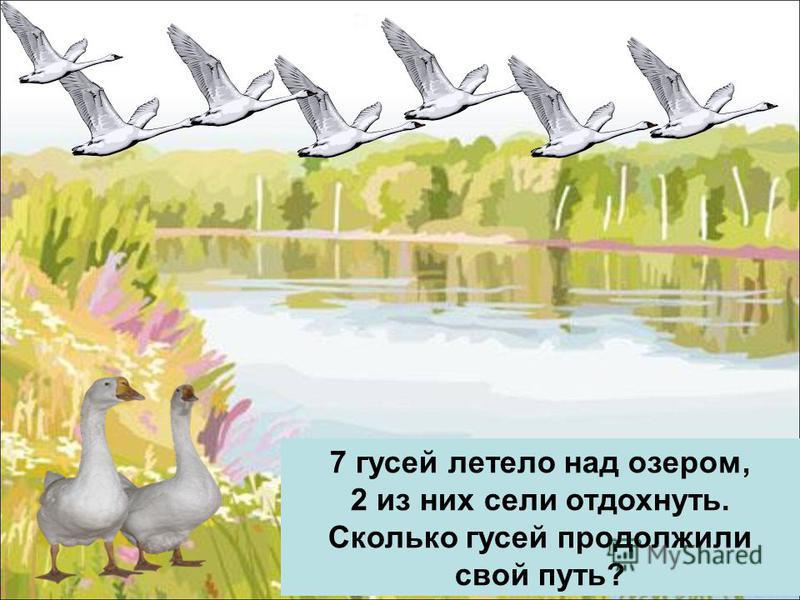 7 гусей летело над озером, 2 из них сели отдохнуть. Сколько гусей продолжили свой путь?
