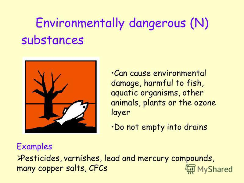 Environmentally dangerous (N) substances Can cause environmental damage, harmful to fish, aquatic organisms, other animals, plants or the ozone layer Do not empty into drains Examples Pesticides, varnishes, lead and mercury compounds, many copper sal