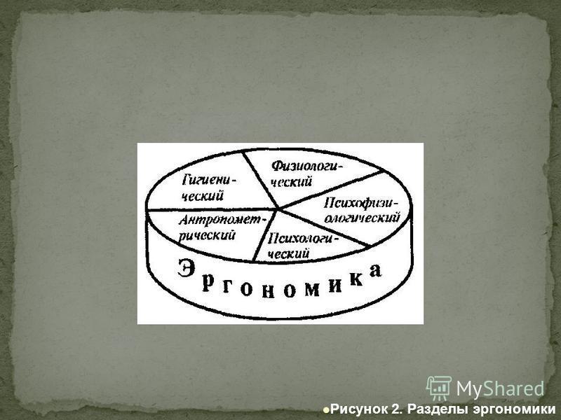 Рисунок 2. Разделы эргономики