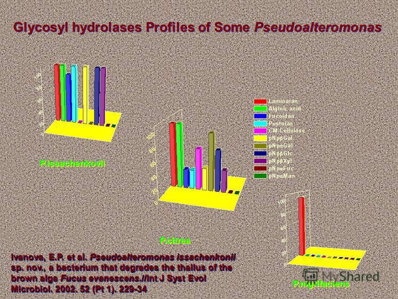 P.issachenkovii P.citrea P.nigrifaciens Glycosyl hydrolases Profiles of Some Pseudoalteromonas Ivanova, E.P. et al. Pseudoalteromonas issachenkonii sp. nov., a bacterium that degrades the thallus of the brown alga Fucus evanescens.//Int J Syst Evol M