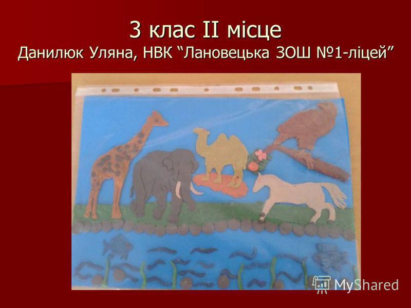 3 клас ІІ місце Данилюк Уляна, НВК Лановецька ЗОШ 1-ліцей