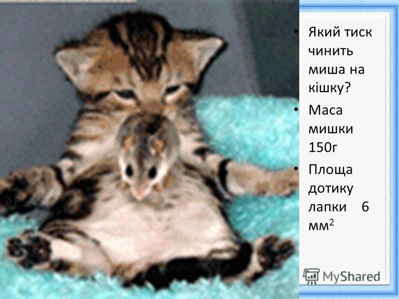 Який тиск чинить миша на кішку? Маса мишки 150г Площа дотику лапки 6 мм 2