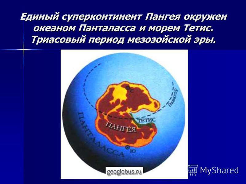 Единый суперконтинент Пангея окружен океаном Панталасса и морем Тетис. Триасовый период мезозойской эры.