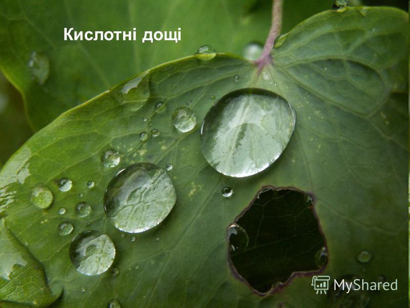 . Кислотні дощі