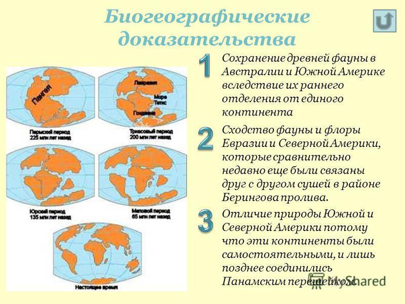 Сохранение древней фауны в Австралии и Южной Америке вследствие их раннего отделения от единого континента Сходство фауны и флоры Евразии и Северной Америки, которые сравнительно недавно еще были связаны друг с другом сушей в районе Берингова пролива