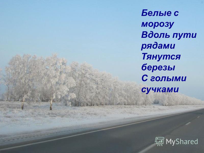 Белые с морозу Вдоль пути рядами Тянутся березы С голыми сучками.