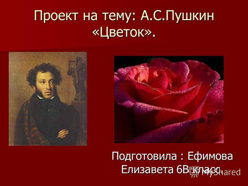 Проект на тему: А.С.Пушкин «Цветок». Подготовила : Ефимова Елизавета 6В класс.