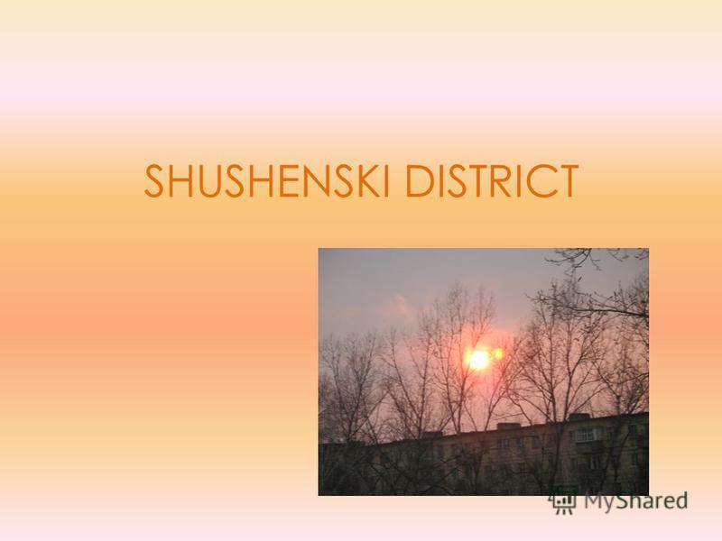 SHUSHENSKI DISTRICT