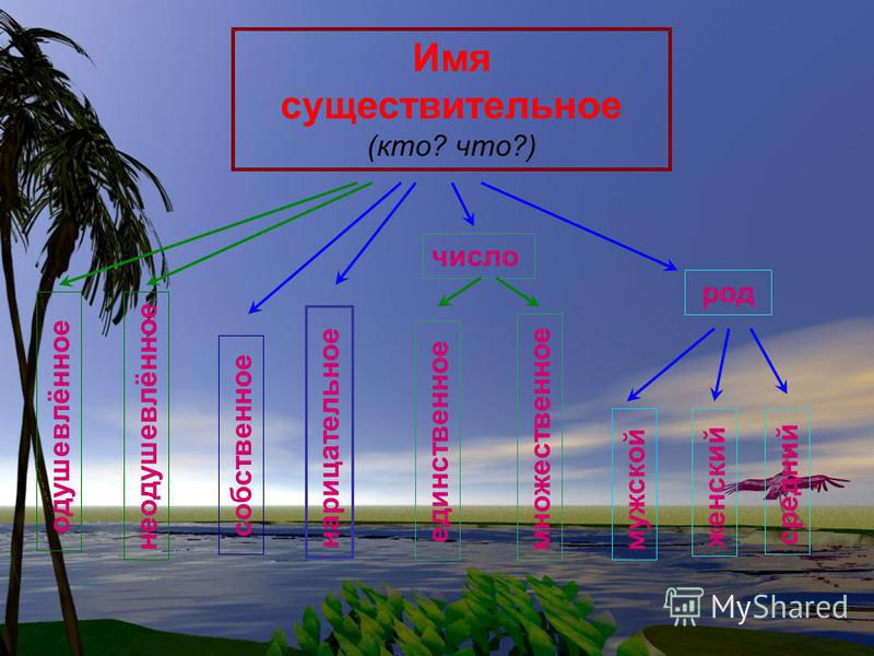 Имя существительное Живые организмы Предметы действительности Явления действительности Действие как предмет Признак как предмет вещества