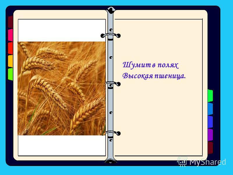 Шумит в полях Высокая пшеница.