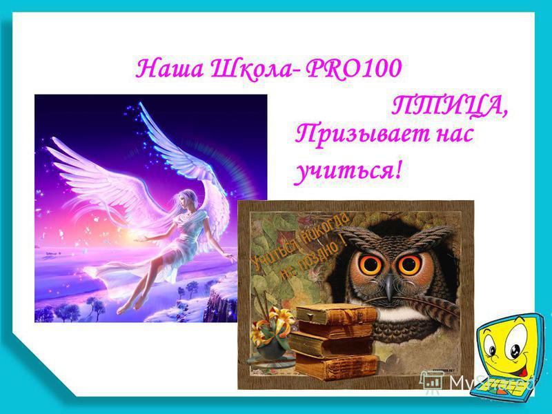 Наша Школа- PRO100 ПТИЦА, Призывает нас учиться!