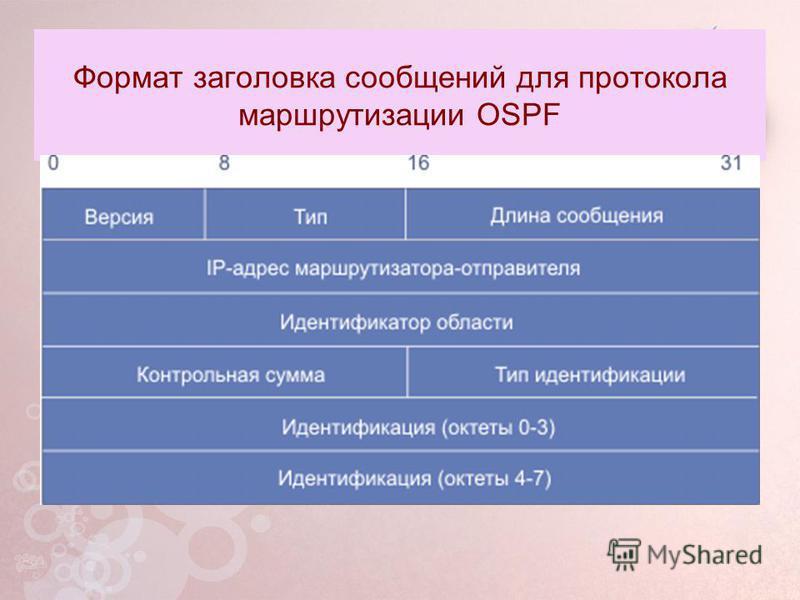 Формат заголовка сообщений для протокола маршрутизации OSPF