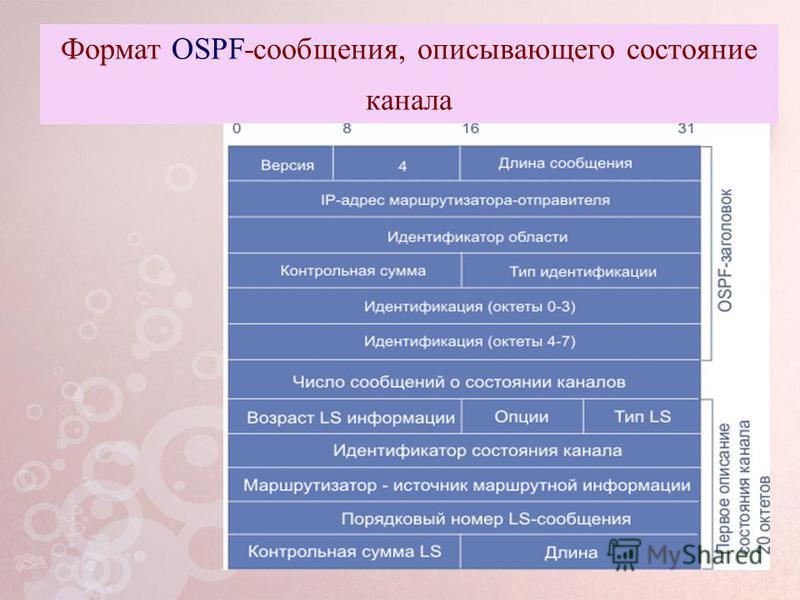 Формат OSPF-сообщения, описывающего состояние канала