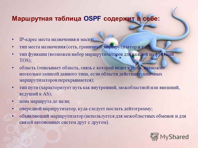 Маршрутная таблица OSPF содержит в себе: IP-адрес места назначения и маску; тип места назначения (сеть, граничный маршрутизатор и т.д.); тип функции (возможен набор маршрутизаторов для каждой из функций TOS); область (описывает область, связь с котор