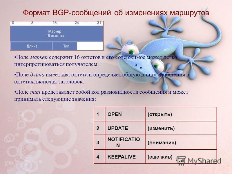 Формат BGP-сообщений об изменениях маршрутов Поле маркер содержит 16 октетов и его содержимое может легко интерпретироваться получателем. Поле длина имеет два октета и определяет общую длину сообщения в октетах, включая заголовок. Поле тип представля