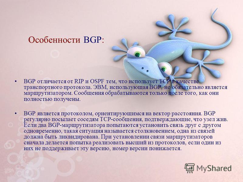 Особенности BGP: BGP отличается от RIP и OSPF тем, что использует TCP в качестве транспортного протокола. ЭВМ, использующая BGP, не обязательно является маршрутизатором. Сообщения обрабатываются только после того, как они полностью получены. BGP явля