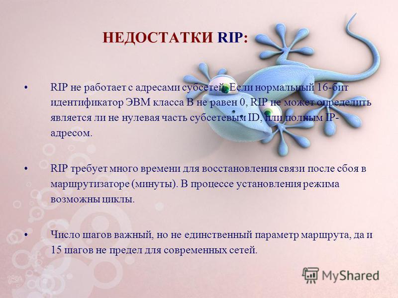 НЕДОСТАТКИ RIP: RIP не работает с адресами субсетей. Если нормальный 16-бит идентификатор ЭВМ класса B не равен 0, RIP не может определить является ли не нулевая часть cубсетевым ID, или полным IP- адресом. RIP требует много времени для восстановлени