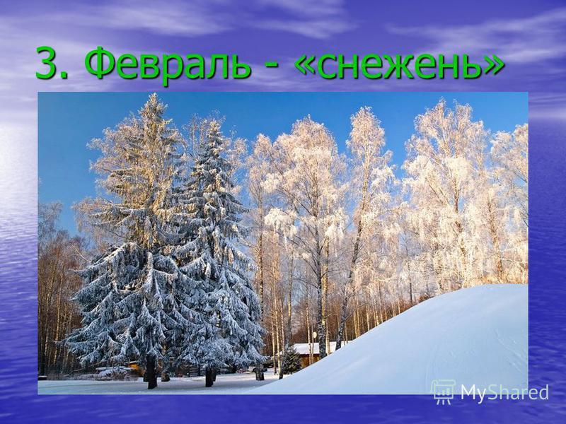 3. Февраль - «снежень»