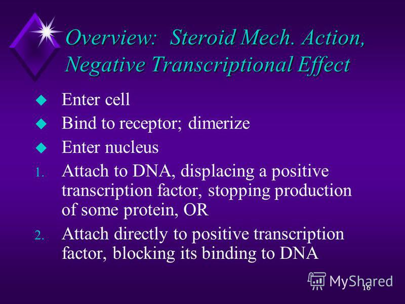 16 Overview: Steroid Mech. Action, Negative Transcriptional Effect u Enter cell u Bind to receptor; dimerize u Enter nucleus 1. Attach to DNA, displacing a positive transcription factor, stopping production of some protein, OR 2. Attach directly to p
