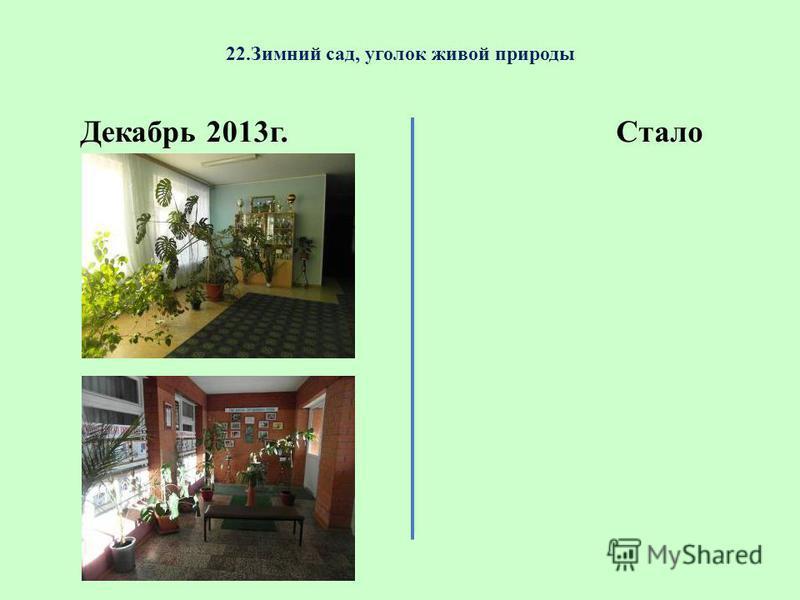 22. Зимний сад, уголок живой природы Декабрь 2013 г.Стало