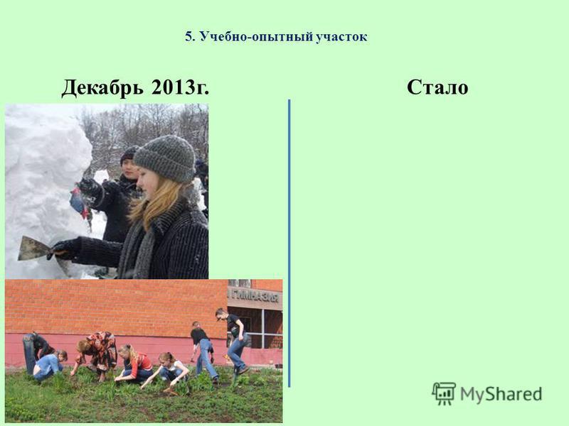 5. Учебно-опытный участок Декабрь 2013 г. Стало