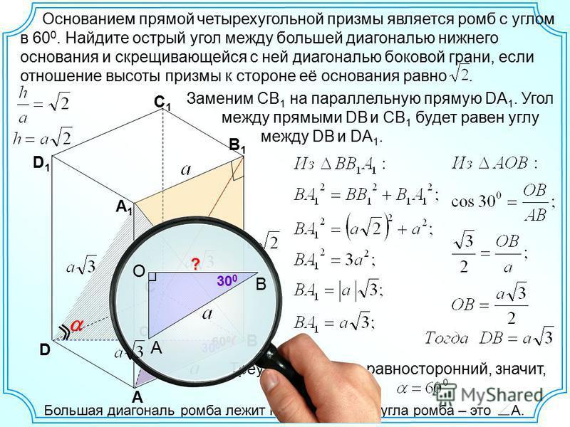 Треугольник DBA 1 равносторонний, значит, Большая диагональ ромба лежит напротив тупого угла ромба – это А. A C1C1 В B1B1 С A1A1 D D1D1 Заменим СВ 1 на параллельную прямую DА 1. Угол между прямыми DB и CB 1 будет равен углу между DB и DA 1. 60 0 Осно