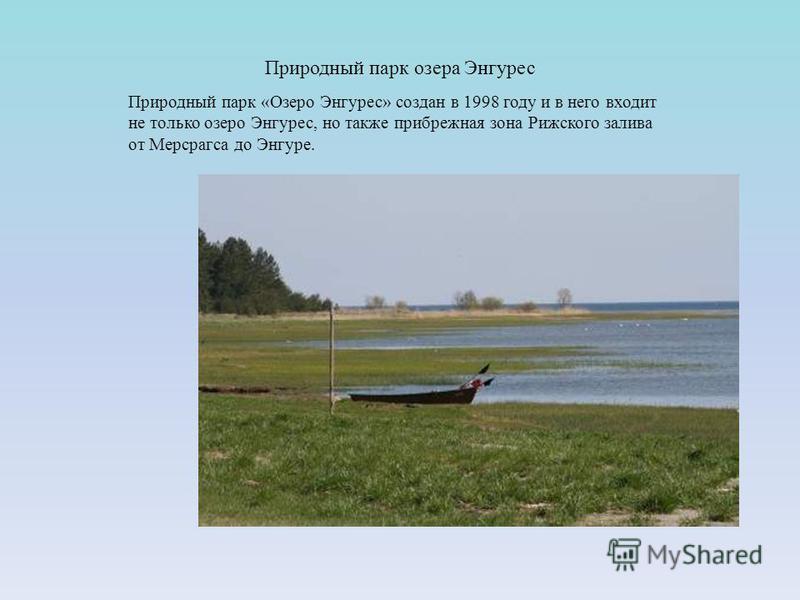 Природный парк озера Энгурес Природный парк «Озеро Энгурес» создан в 1998 году и в него входит не только озеро Энгурес, но также прибрежная зона Рижского залива от Мерсрагса до Энгуре.
