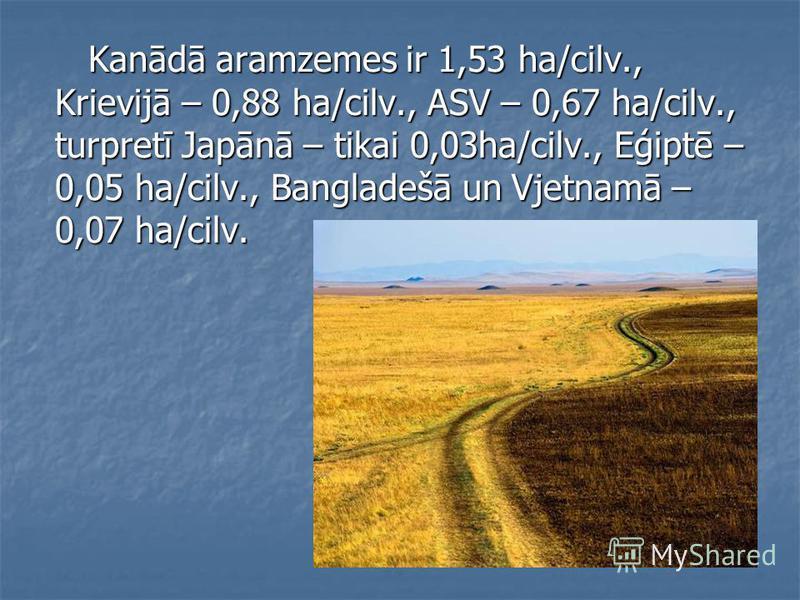 Kanādā aramzemes ir 1,53 ha/cilv., Krievijā – 0,88 ha/cilv., ASV – 0,67 ha/cilv., turpretī Japānā – tikai 0,03ha/cilv., Eģiptē – 0,05 ha/cilv., Bangladešā un Vjetnamā – 0,07 ha/cilv. Kanādā aramzemes ir 1,53 ha/cilv., Krievijā – 0,88 ha/cilv., ASV –