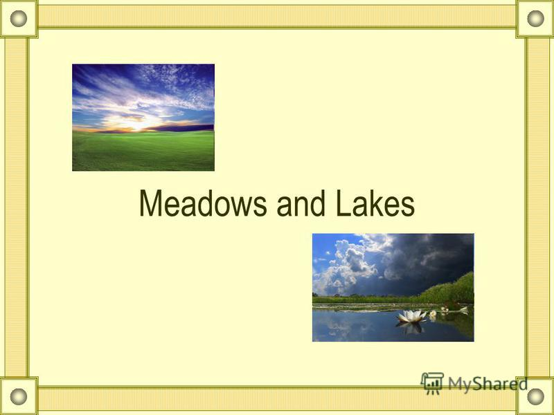 Meadows and Lakes