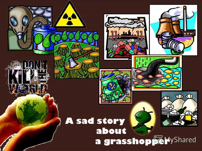 A sad story about a grasshopper
