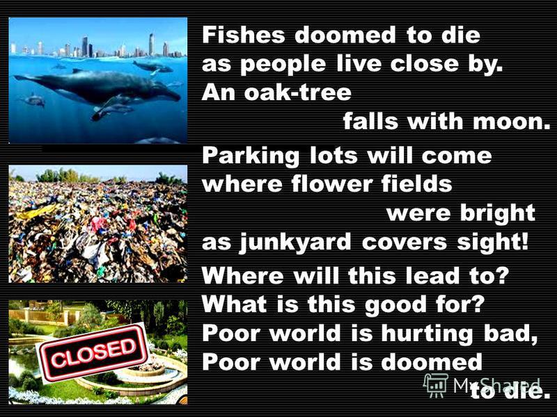 Fishes doomed to die as people live close by. An oak-tree falls with moon. Parking lots will come where flower fields were bright as junkyard covers sight! Where will this lead to? What is this good for? Poor world is hurting bad, Poor world is doome