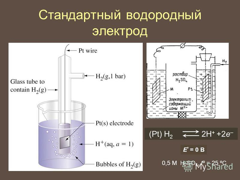 Стандартный водородный электрод (Pt) H 2 2Н + +2 е – E º = 0 В 0,5 М H 2 SO 4, tº = 25 ºC