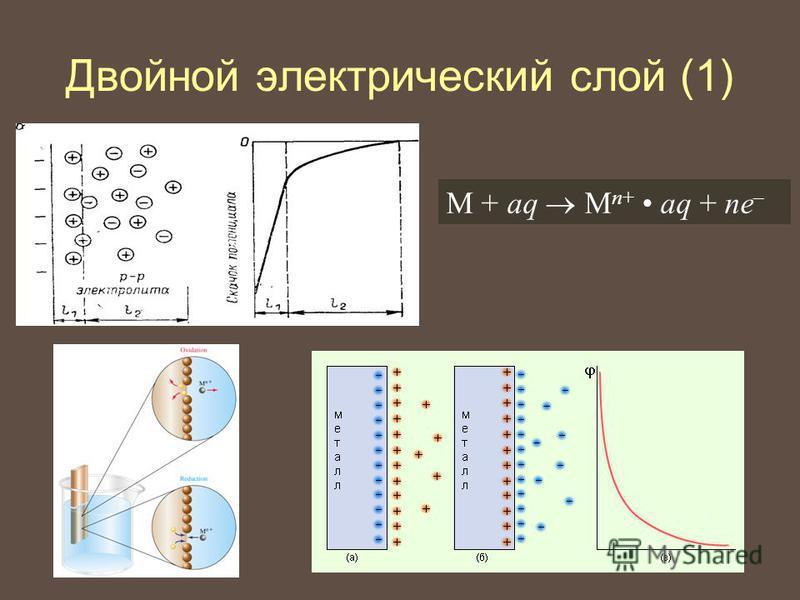 Двойной электрический слой (1) М + aq М n+ aq + ne –
