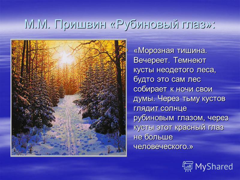 М.М. Пришвин «Рубиновый глаз»: «Морозная тишина. Вечереет. Темнеют кусты неодетого леса, будто это сам лес собирает к ночи свои думы. Через тьму кустов глядит солнце рубиновым глазом, через кусты этот красный глаз не больше человеческого.» «Морозная