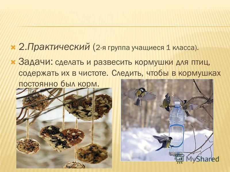 2. Практический ( 2-я группа учащиеся 1 класса). Задачи: сделать и развесить кормушки для птиц, содержать их в чистоте. Следить, чтобы в кормушках постоянно был корм.