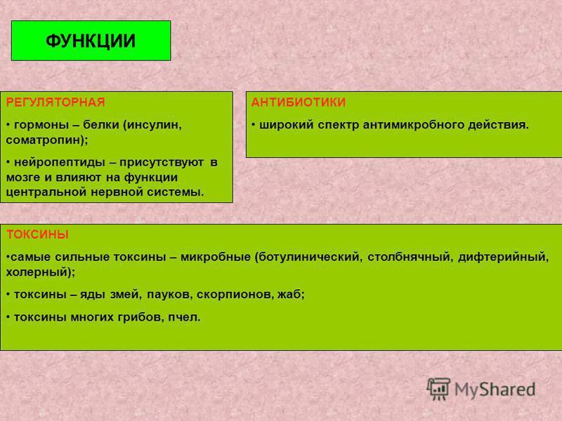 РЕГУЛЯТОРНАЯ гормоны – белки (инсулин, соматропин); нейропептиды – присутствуют в мозге и влияют на функции центральной нервной системы. ТОКСИНЫ самые сильные токсины – микробные (ботулинический, столбнячный, дифтерийный, холерный); токсины – яды зме