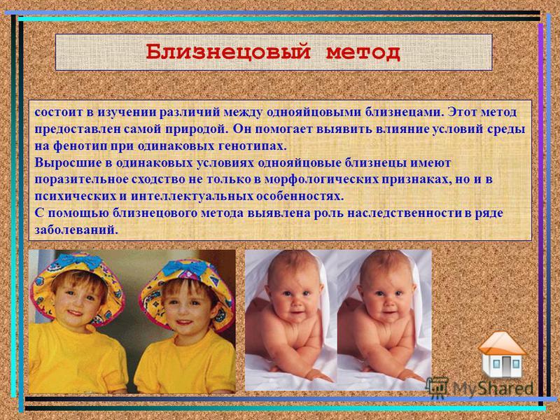 Близнецовый метод состоит в изучении различий между однояйцовыми близнецами. Этот метод предоставлен самой природой. Он помогает выявить влияние условий среды на фенотип при одинаковых генотипах. Выросшие в одинаковых условиях однояйцовые близнецы им