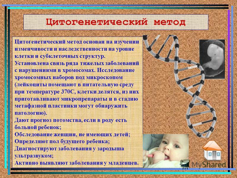 Цитогенетический метод Цитогенетический метод основан на изучении изменчивости и наследственности на уровне клетки и субклеточных структур. Установлена связь ряда тяжелых заболеваний с нарушениями в хромосомах. Исследование хромосомных наборов под ми