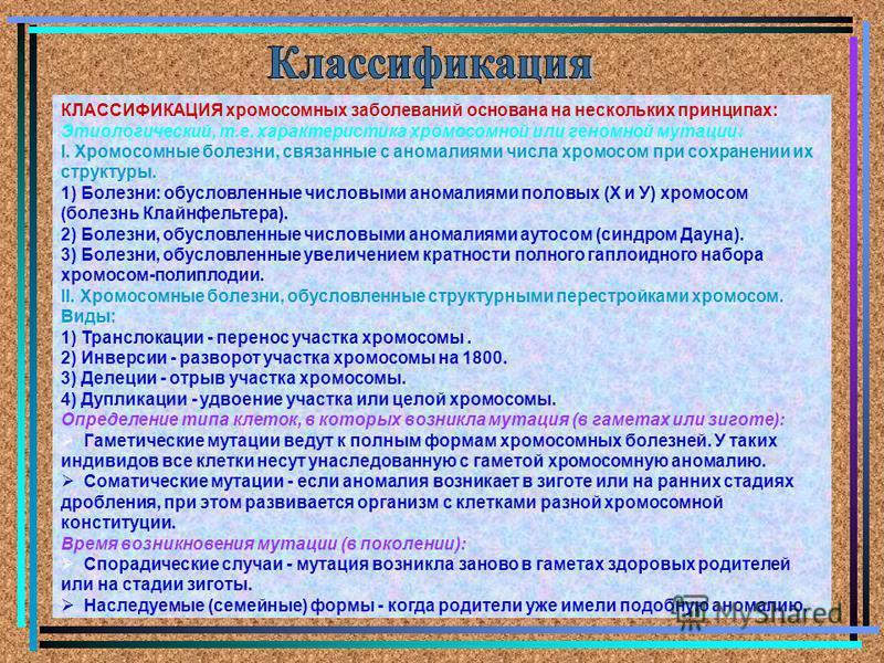 КЛАССИФИКАЦИЯ хромосомных заболеваний основана на нескольких принципах: Этиологический, т.е. характеристика хромосомной или геномной мутации: I. Хромосомные болезни, связанные с аномалиями числа хромосом при сохранении их структуры. 1) Болезни: обусл