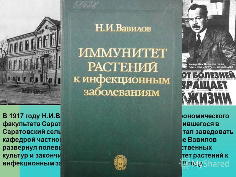 В 1917 году Н.И.Вавилов был избран профессором агрономического факультета Саратовского университета, вскоре выделившегося в Саратовский сельскохозяйственный институт, где он стал заведовать кафедрой частного земледелия и селекции. В Саратове Вавилов
