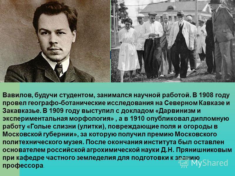 Вавилов, будучи студентом, занимался научной работой. В 1908 году провел географо-ботанические исследования на Северном Кавказе и Закавказье. В 1909 году выступил с докладом «Дарвинизм и экспериментальная морфология», а в 1910 опубликовал дипломную р
