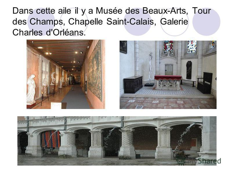 Dans cette aile il y a Musée des Beaux-Arts, Tour des Champs, Chapelle Saint-Calais, Galerie Charles d'Orléans.