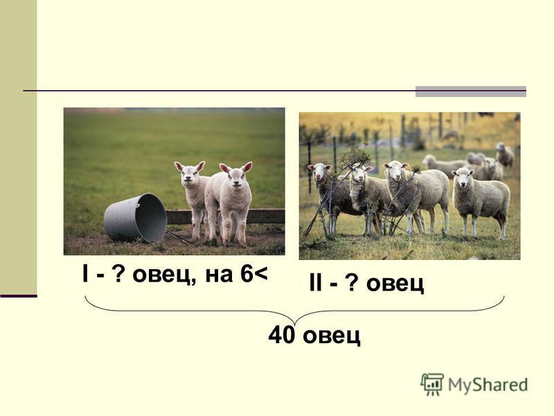 I - ? овец, на 6< II - ? овец 40 овец