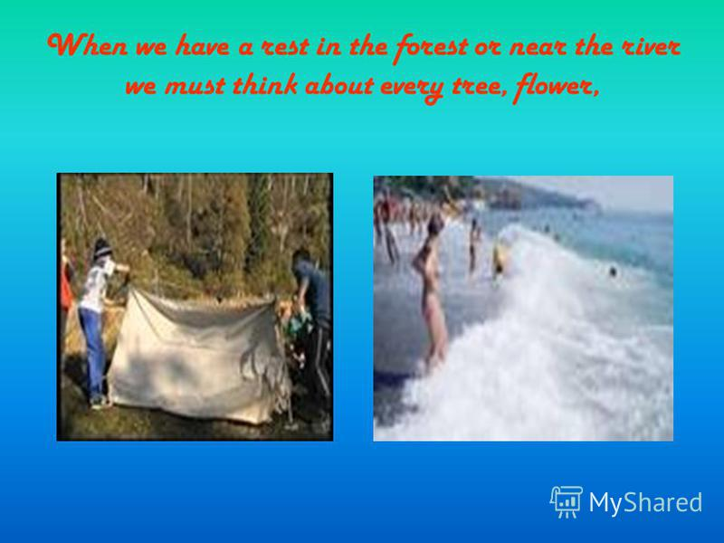 When we have a rest in the forest or near the river we must think about every tree, flower,