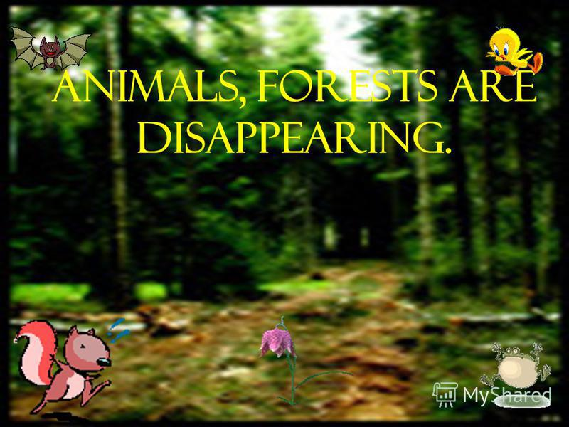 Animals, forests are disappearing.