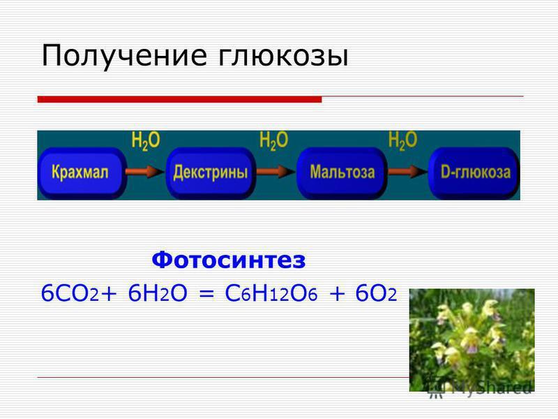 Получение глюкозы Фотосинтез 6CO 2 + 6Н 2 О = С 6 Н 12 О 6 + 6О 2