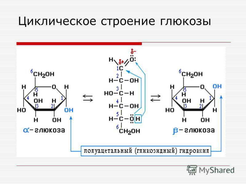 Циклическое строение глюкозы